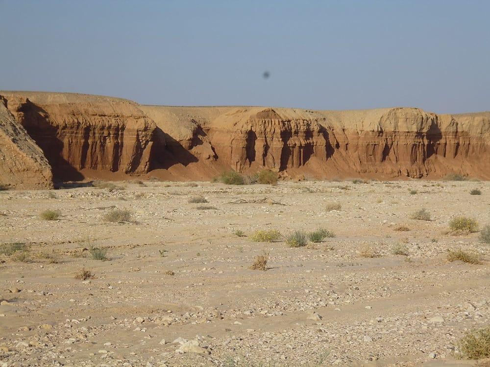 צימרים במדבר